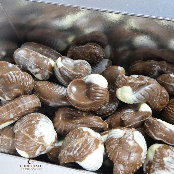 Gourmet Milk Chocolate Seashells