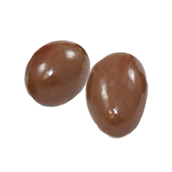 Milk Chocolate Brazil Nuts Small